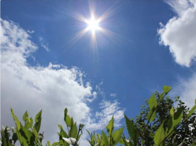 Погода в Казахстане: в стране установлены метеорологические рекорды