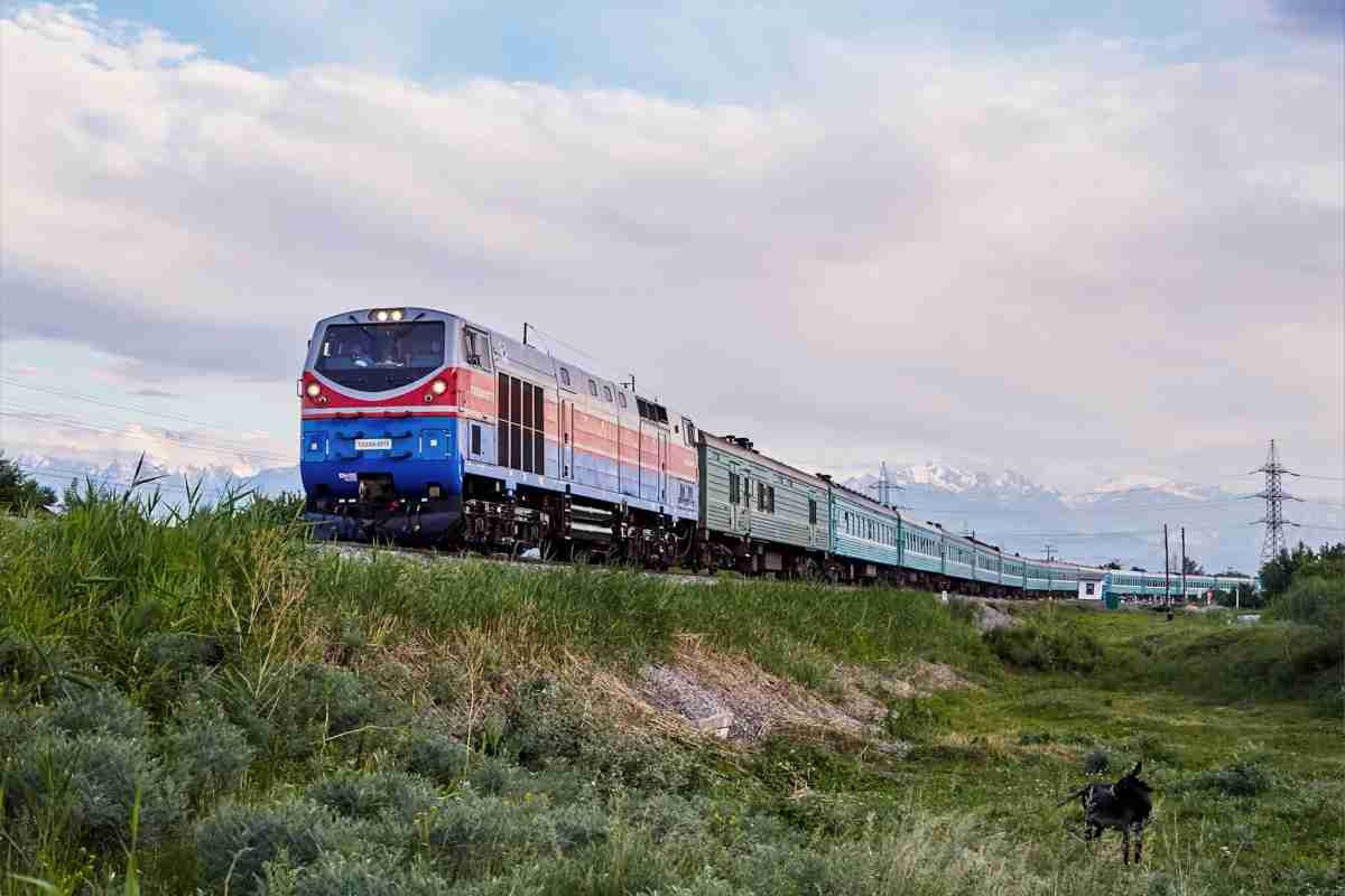 В Казахстане не доступна система онлайн-бронирования билетов на поезда