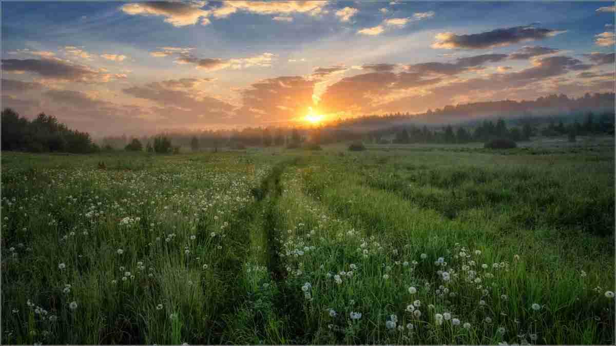 Погода в Казахстане на 15-16 августа