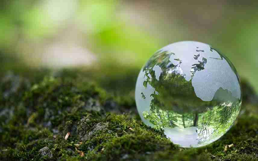 В Казахстане МОН запустит проект экообразования