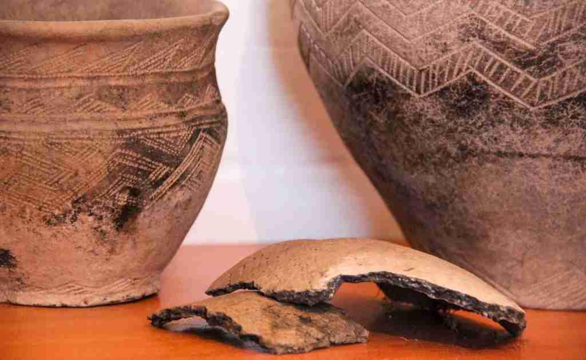 В Павлодарской области найдено захоронение возрастом в 3,5 тысячи лет