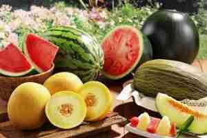 Дыни и арбузы: что вы могли не знать о популярных продуктах